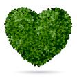 Boxwood heart vector