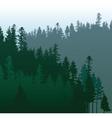 Coniferous forest vector