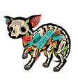 Colorfull chihuahua vector