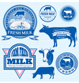 Set of icons on the theme of cows milk vector
