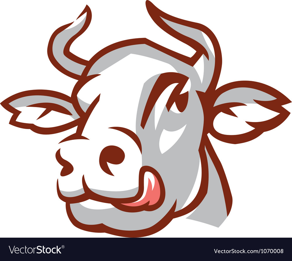 head of white cow royalty free vector image vectorstock