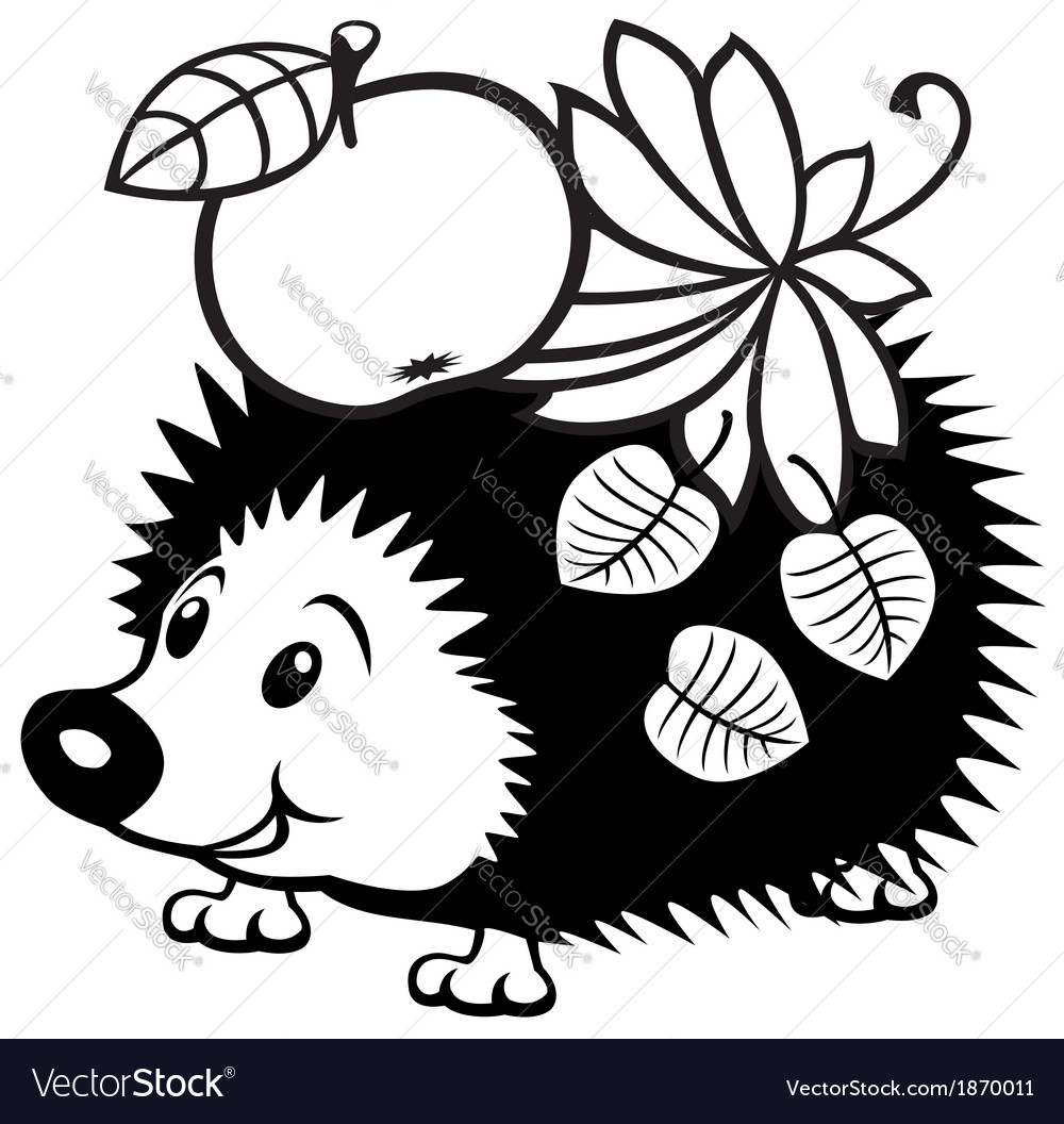 cartoon hedgehog black white royalty free vector image
