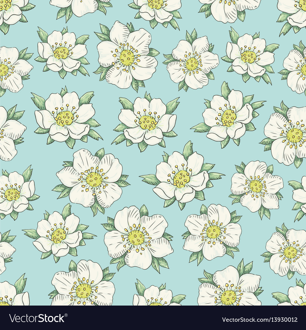 Strawberry flowers vector image