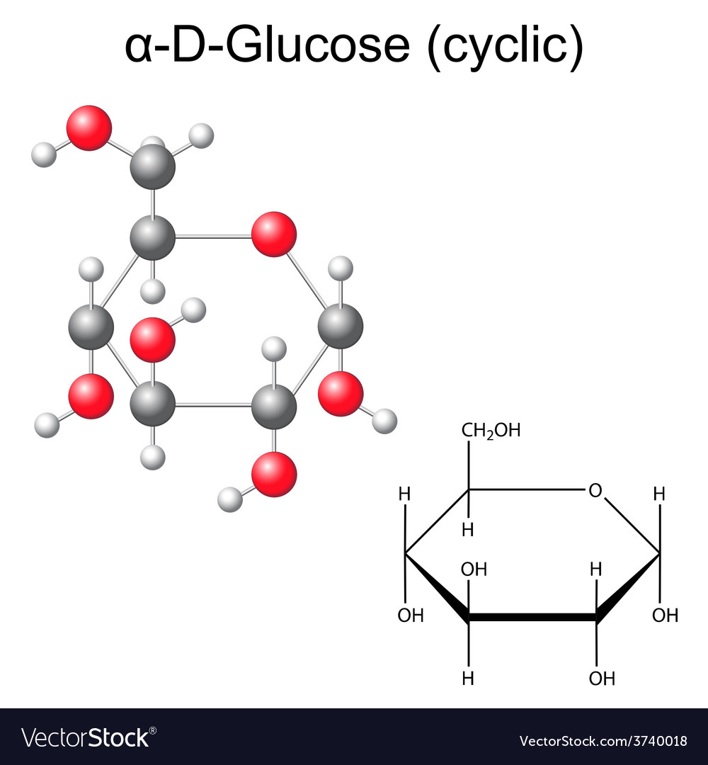 Structural chemical formula and model of glucose vector image biocorpaavc Images
