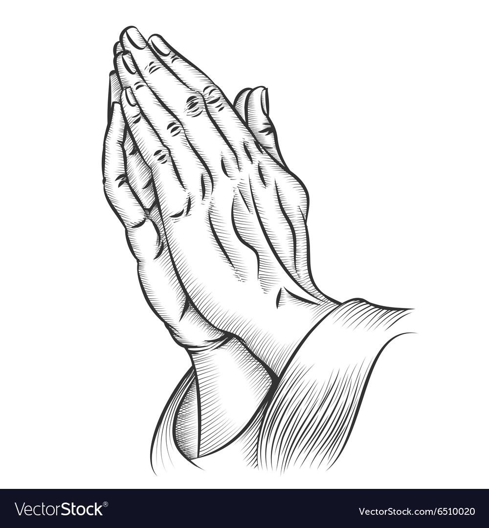 Praying hands vector image