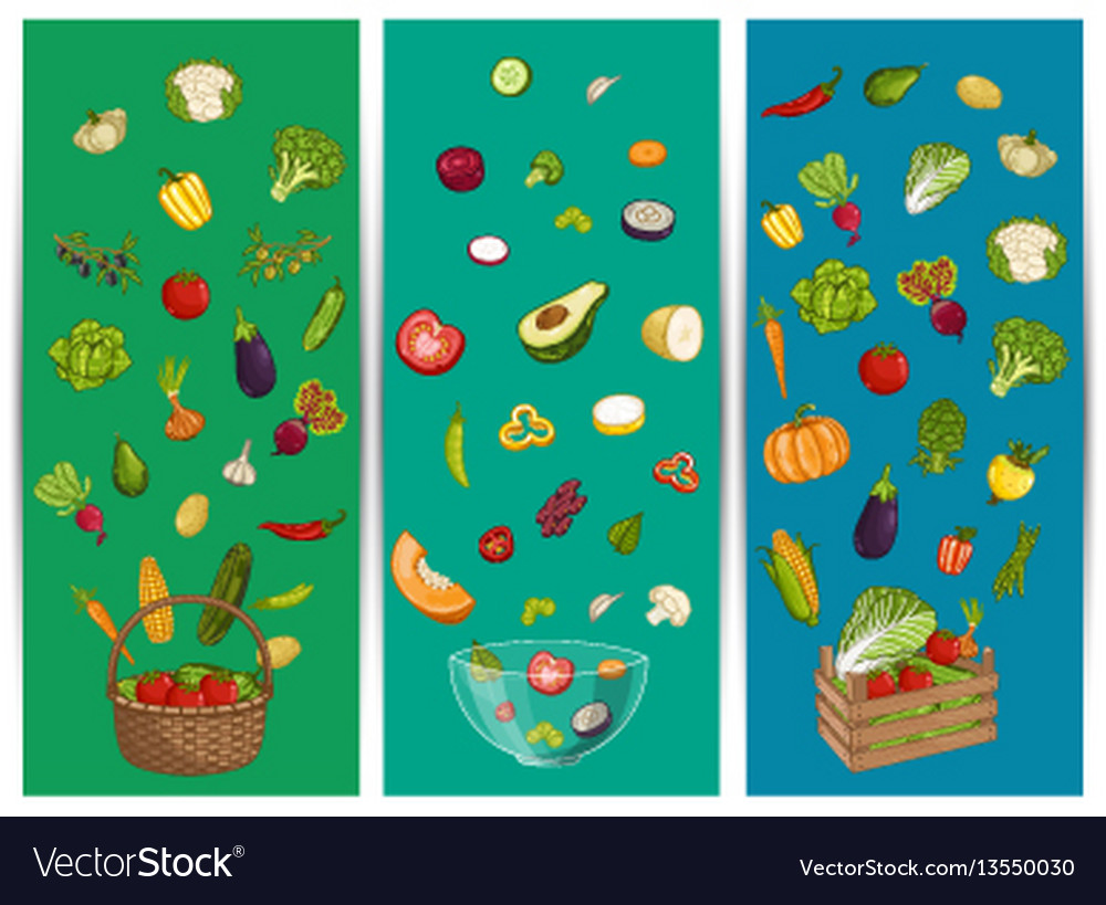 Organic farm food flyer set with vegetable vector image