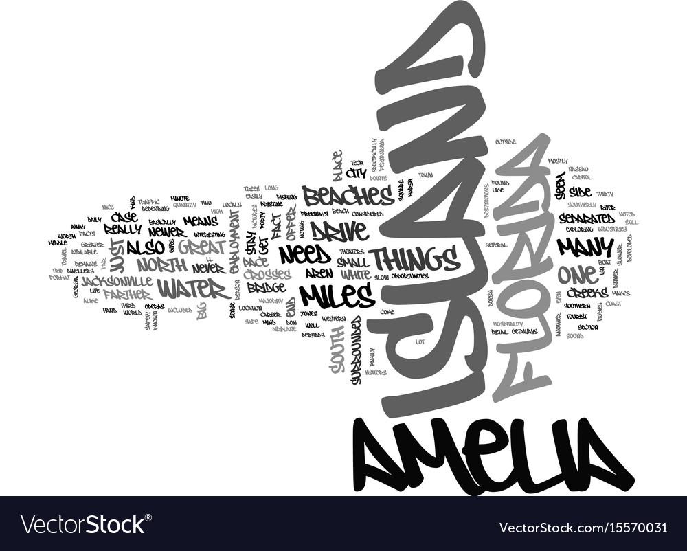 Amelia island condo rentals text word cloud vector image