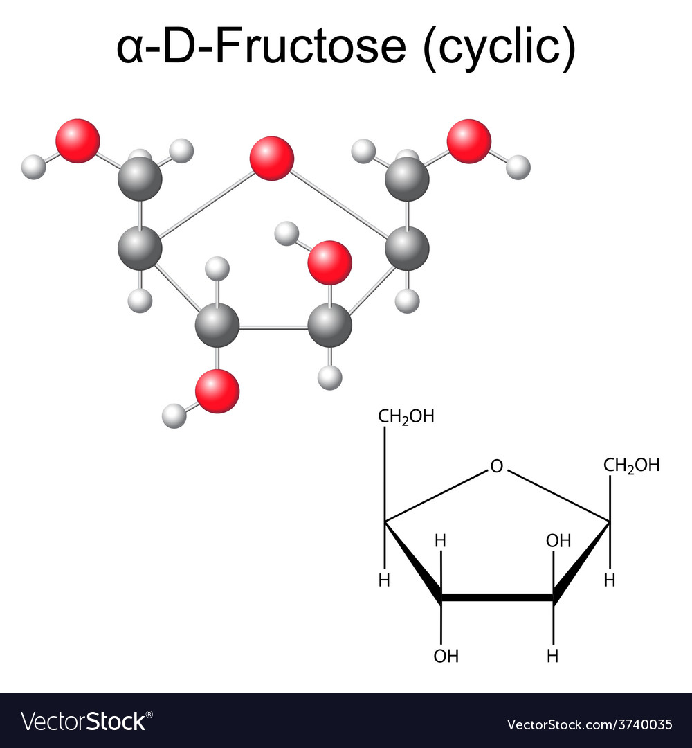 Structural chemical formula and model of fructose vector image structural chemical formula and model of fructose vector image pooptronica