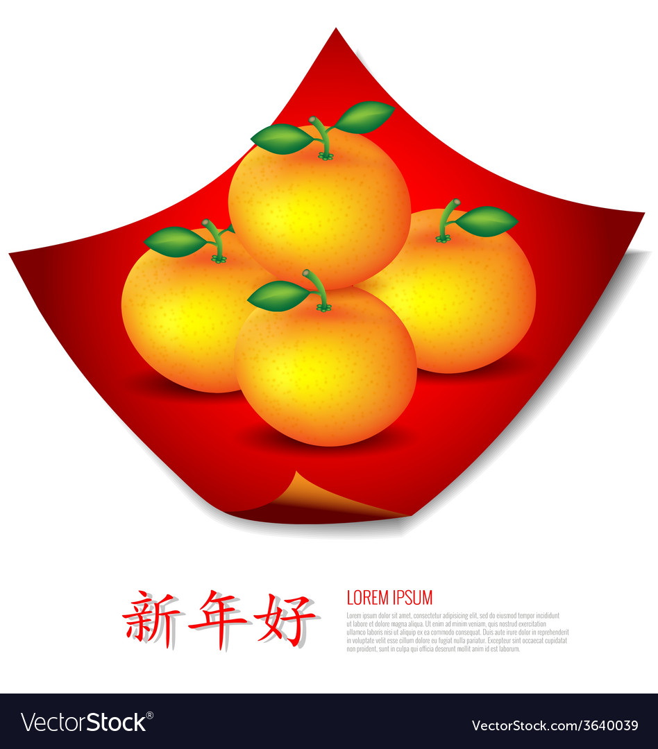 Chinese New Year Mandarin oranges on red cloth vector image