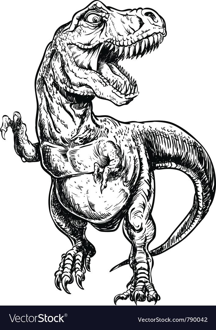 Tyrannosaurus dinosaur linework vector image