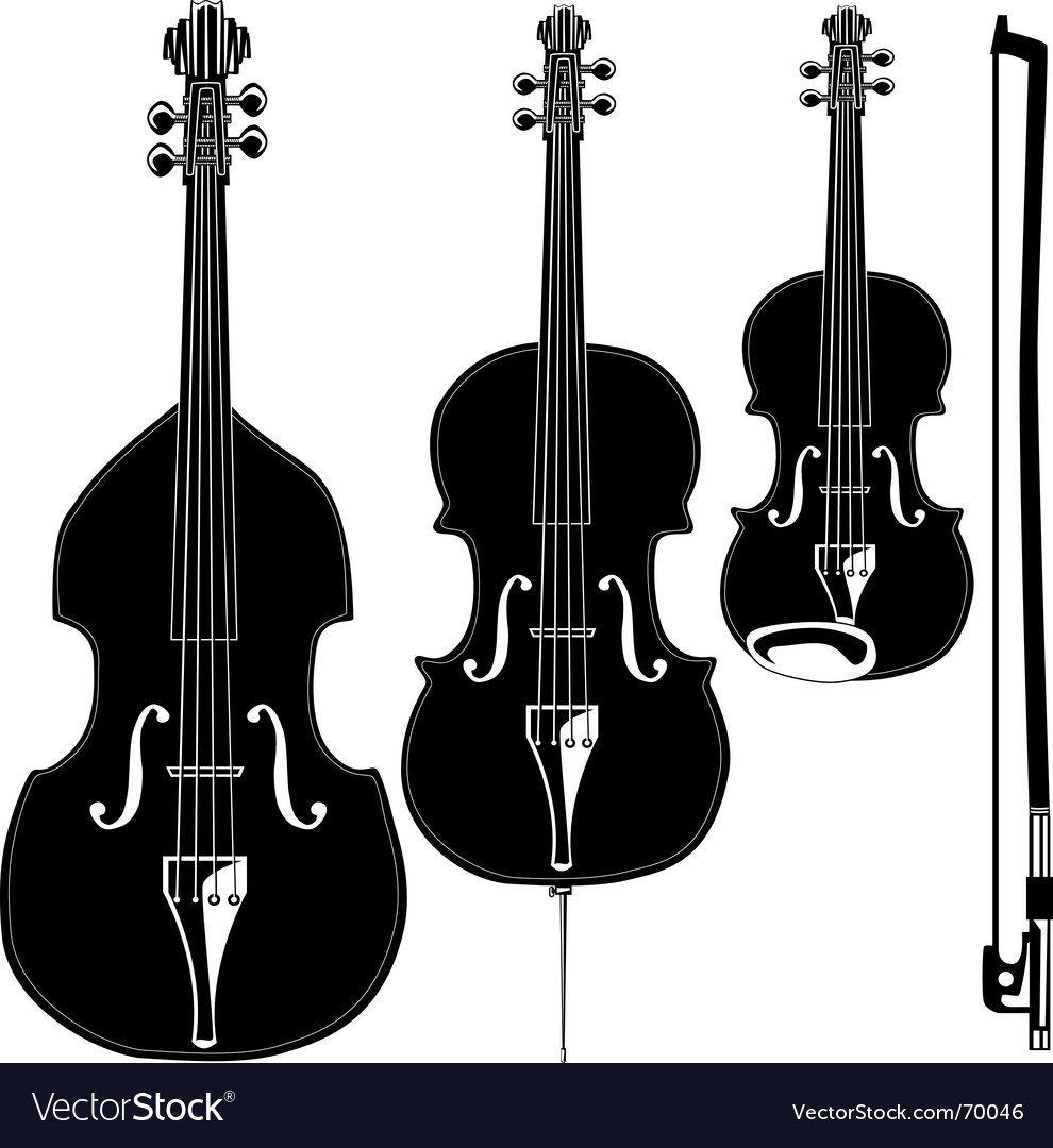 Stringed instruments vector image