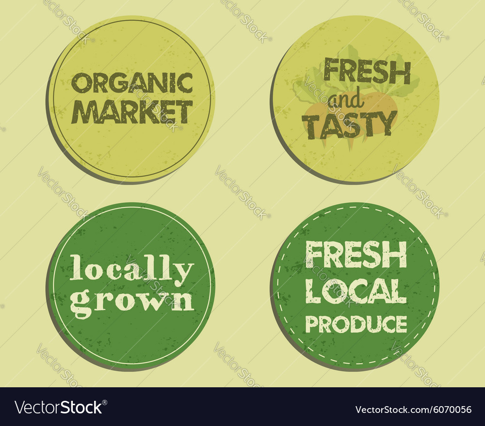 Summer Farm Fresh branding identity elements vector image