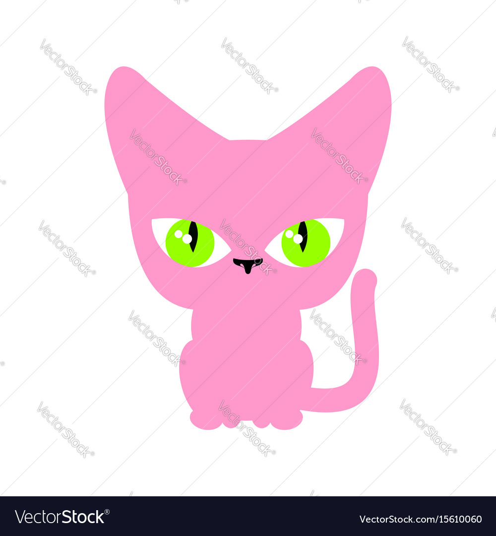 Cat pink isolated pet on white background vector image