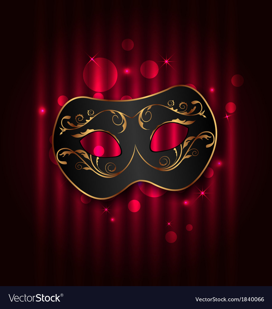 Black carnival ornate mask on glowing background vector image