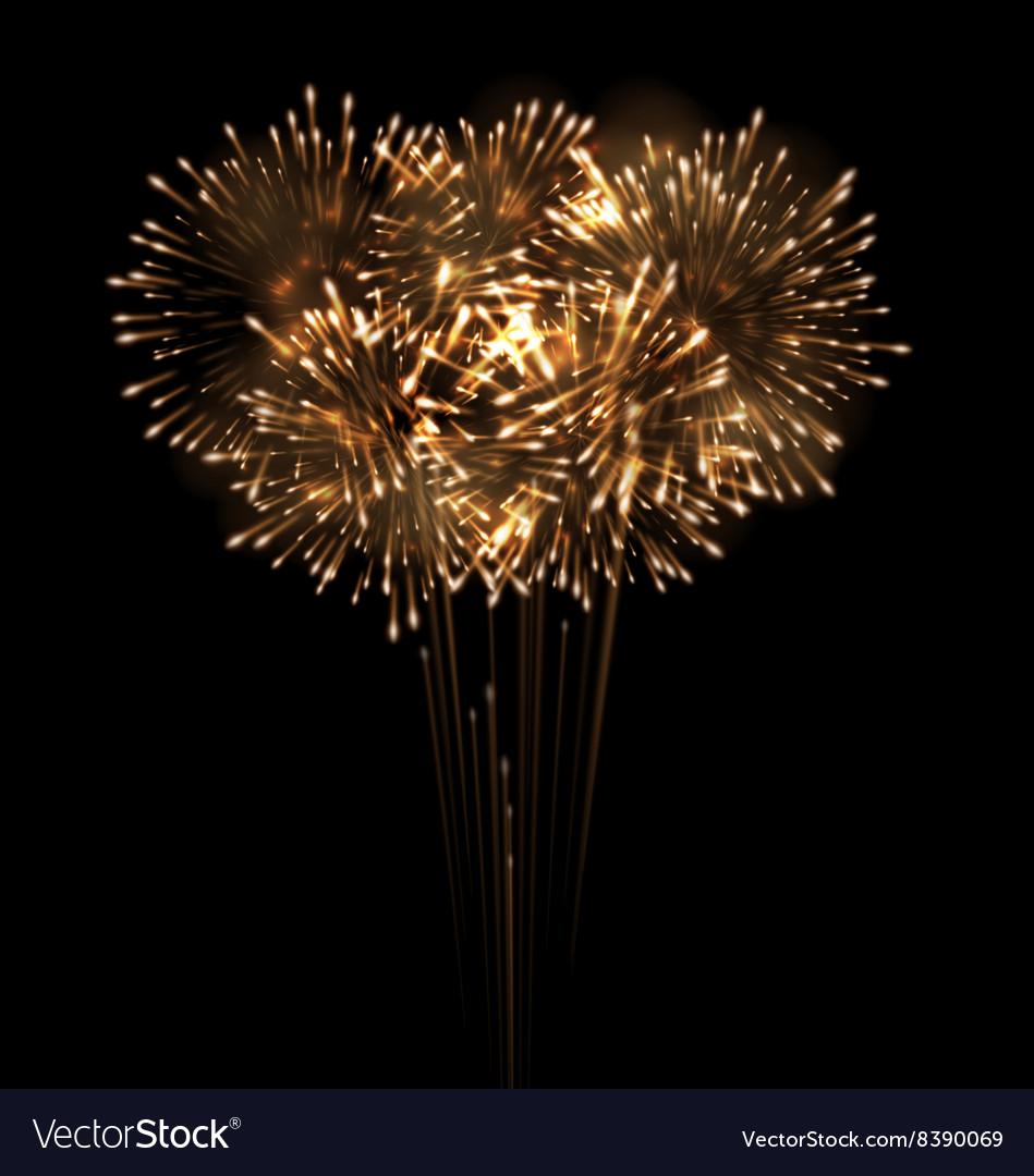 Festive Grandiose Firework Explode Bursting vector image