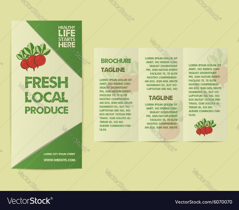 Summer Farm Fresh flyer template or brochure vector image