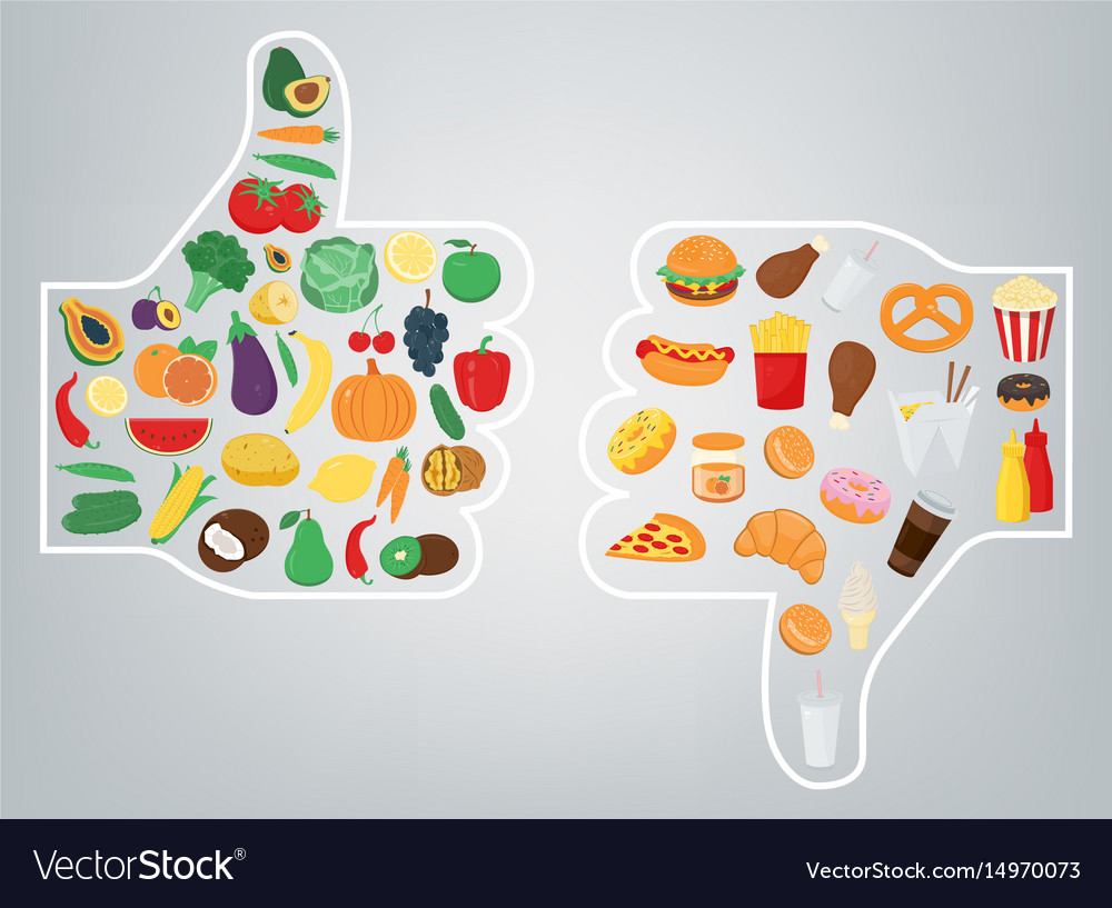Healthy lifestyle concept we are what we eat vector image