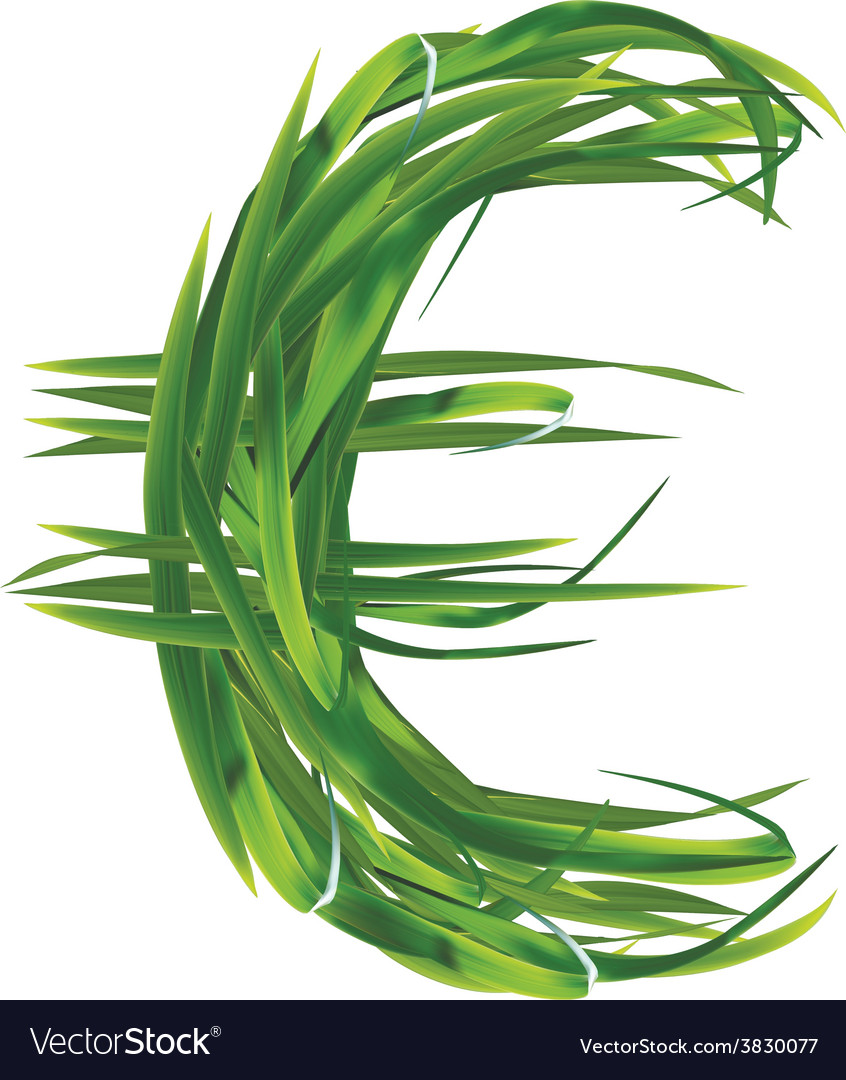 Euro sign from grass vector image