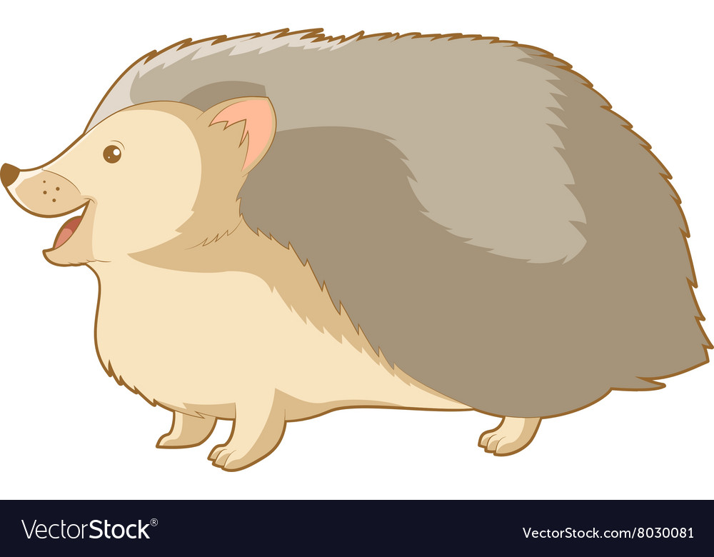 Cartoon smiling hedgehog vector image