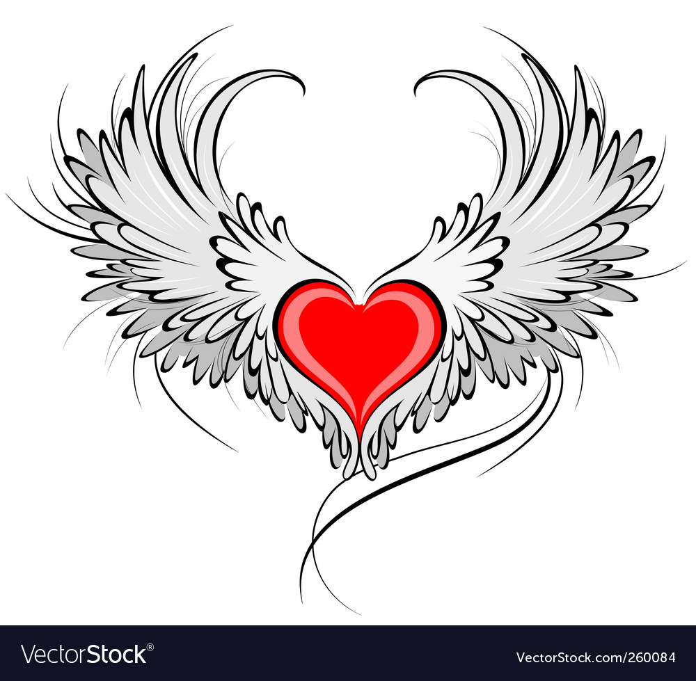 Red heart of an angel vector image