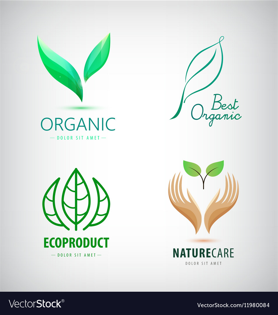 Set of green leaf logos eco organic vector image