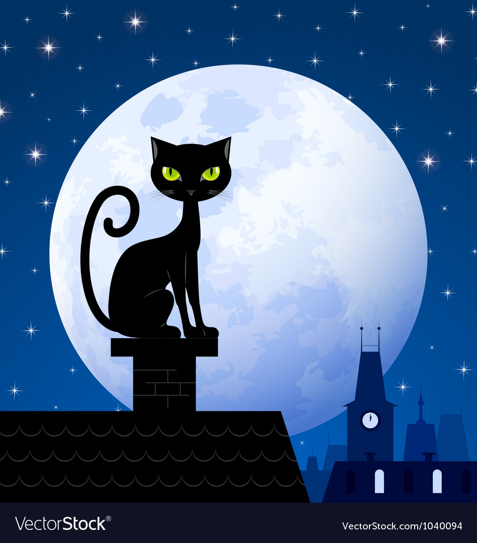 Black cat and moon Vector Image