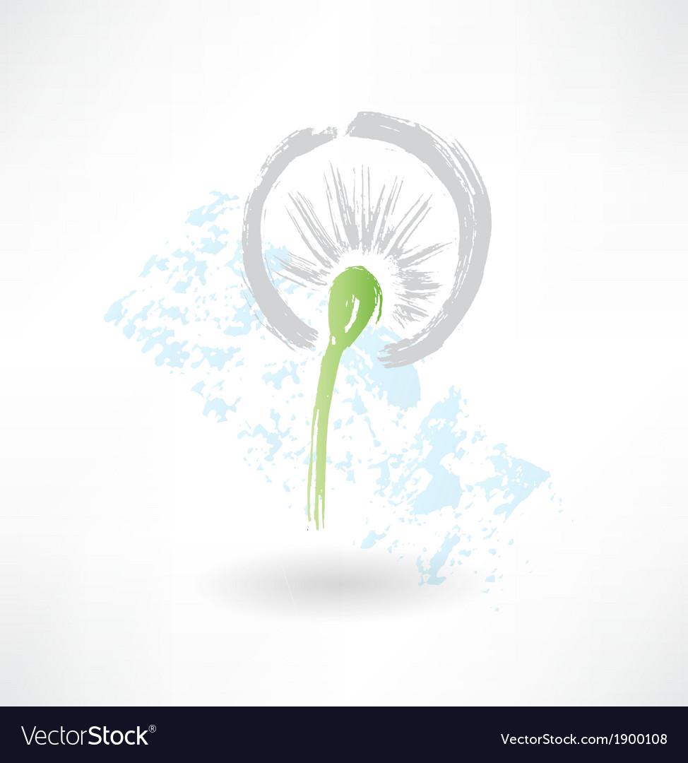 Dandelion grunge icon vector image