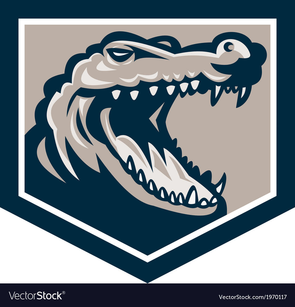 Alligator Head Snout Retro vector image