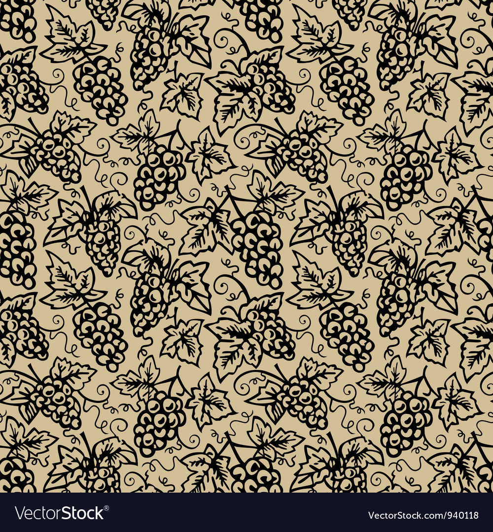 Grape vine background vector image