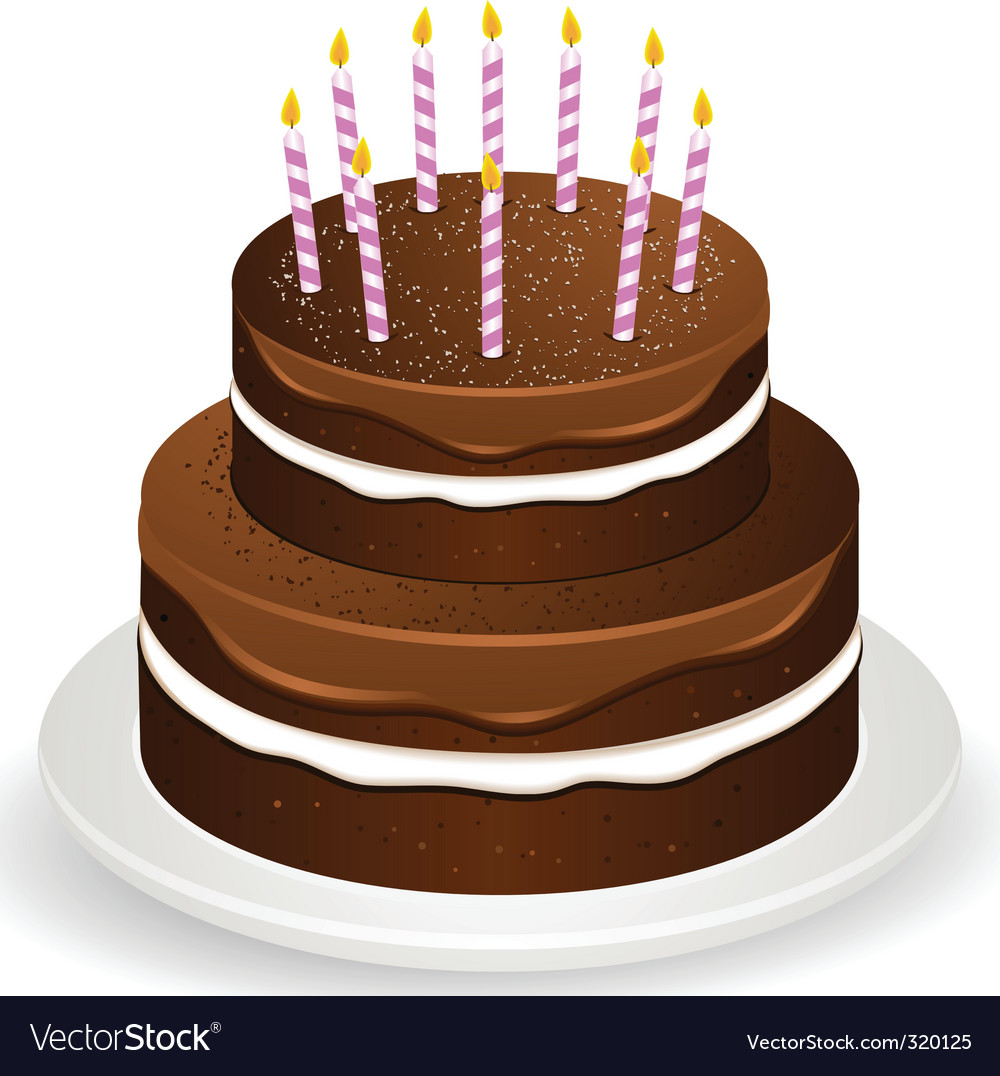 Chocolate brithday cake and candles vector image