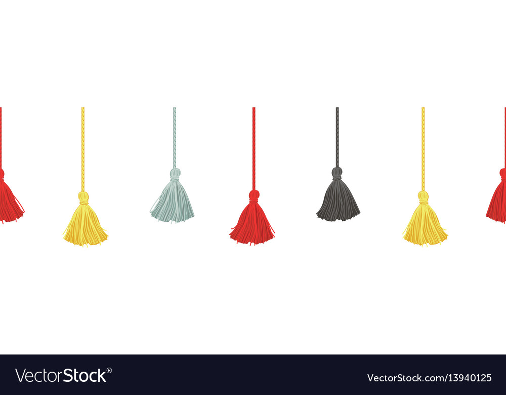 Colorful decorative tassels with ropes vector image