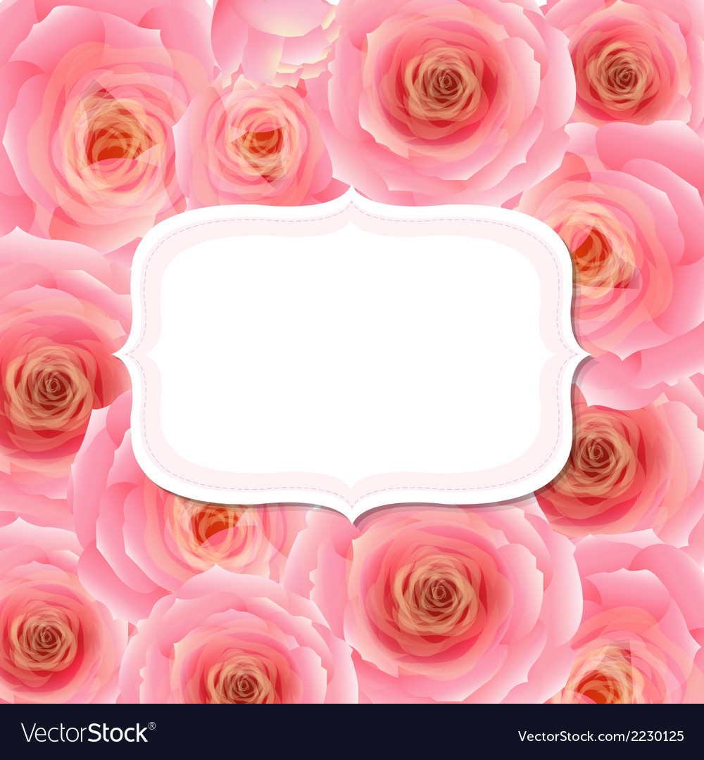 Label With Pink Rose vector image