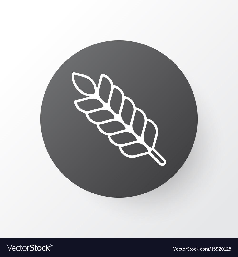 Plant icon symbol premium quality isolated wheat vector image