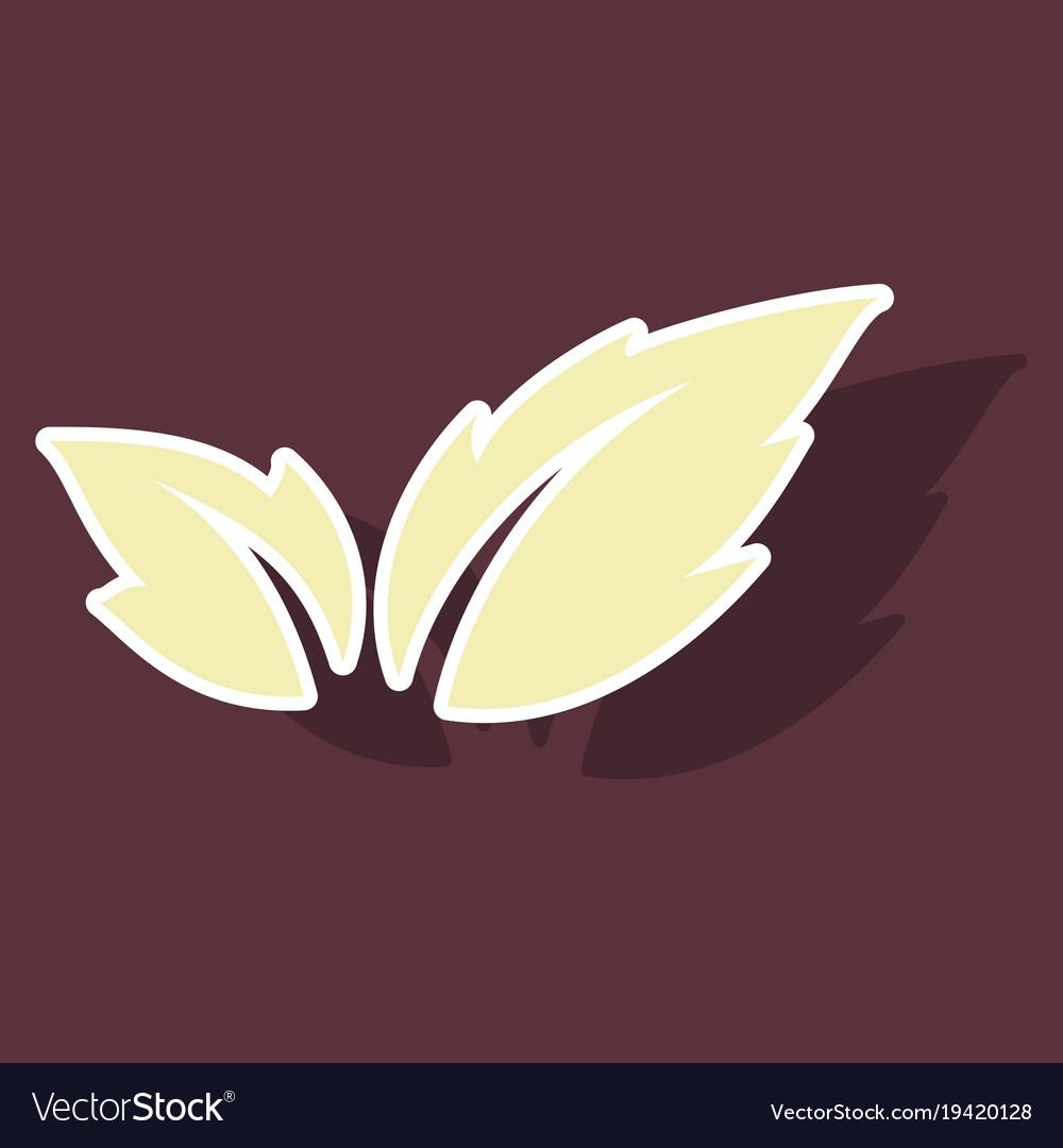 Fresh basil leaves icon sticker of basil leaves