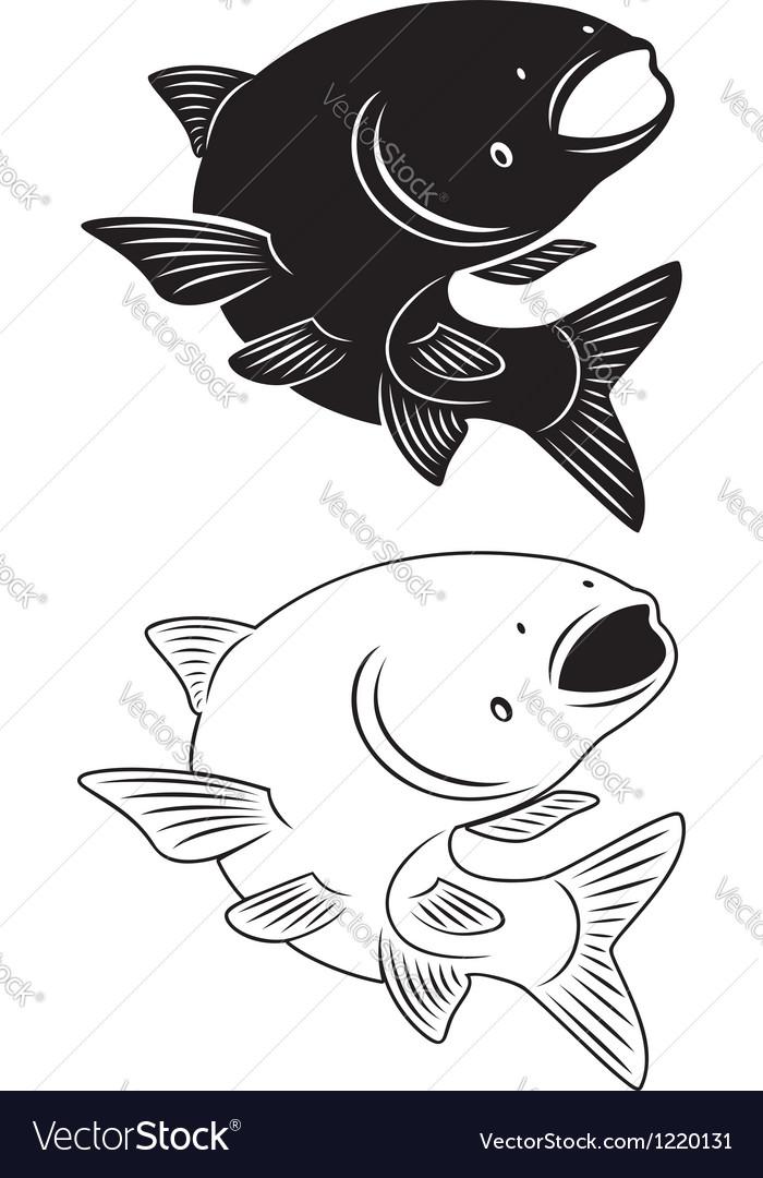 Asian carp vector image