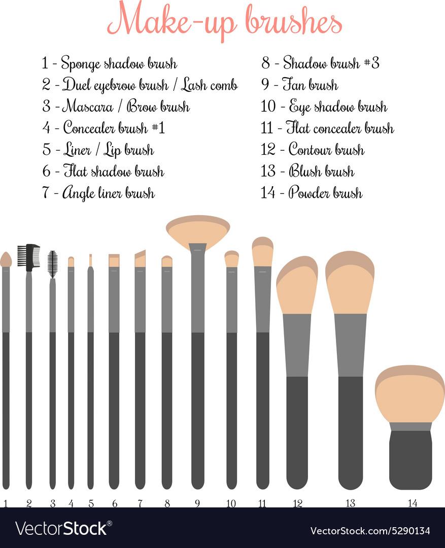 Make-up brushes set vector image