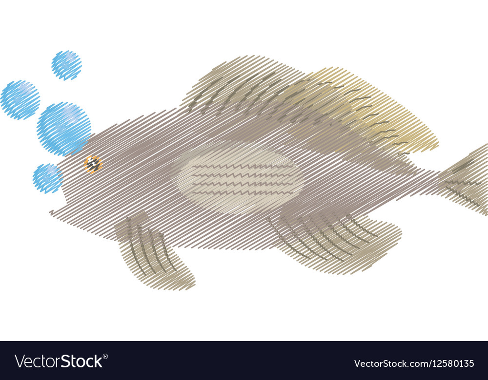 Hand drawing grouper fish side view sea life vector image