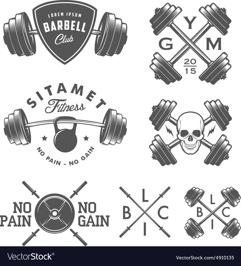 Set of vintage gym emblems and design elements vector image