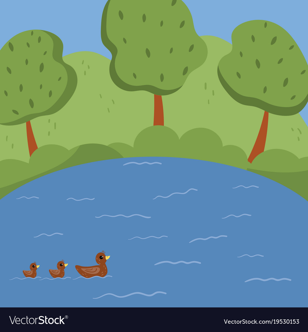 Lake with ducks trees growing on green lawn vector image