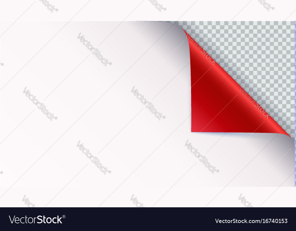 Page Curl With Shadow On Blank Sheet Of Paper Vector Image  Blank Sheet Of Paper With Lines