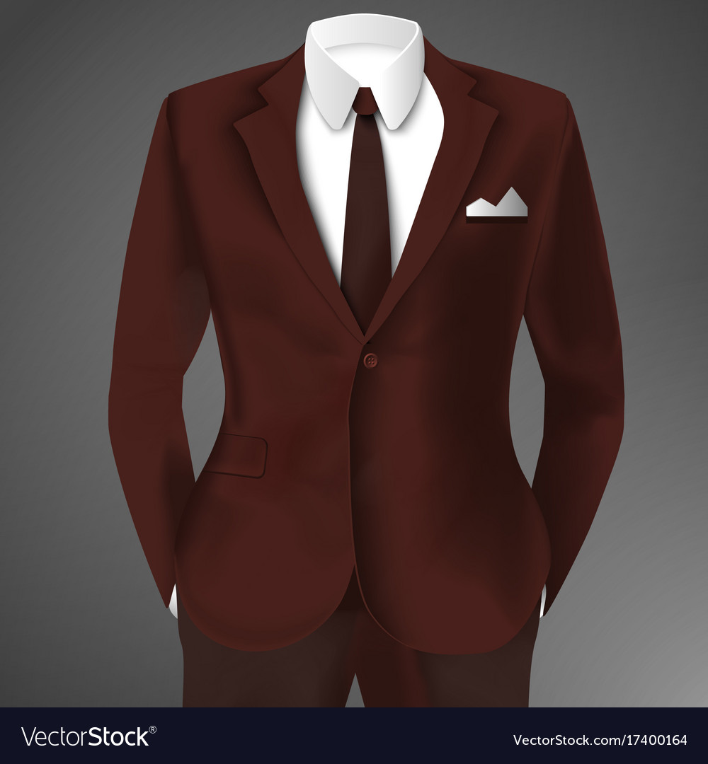 Elegant man suit vector image