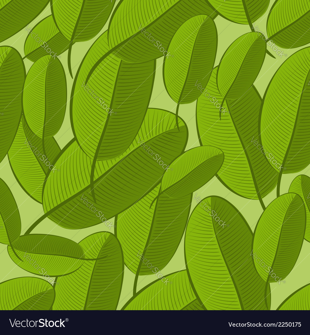 Leaf seamless pattern vector image
