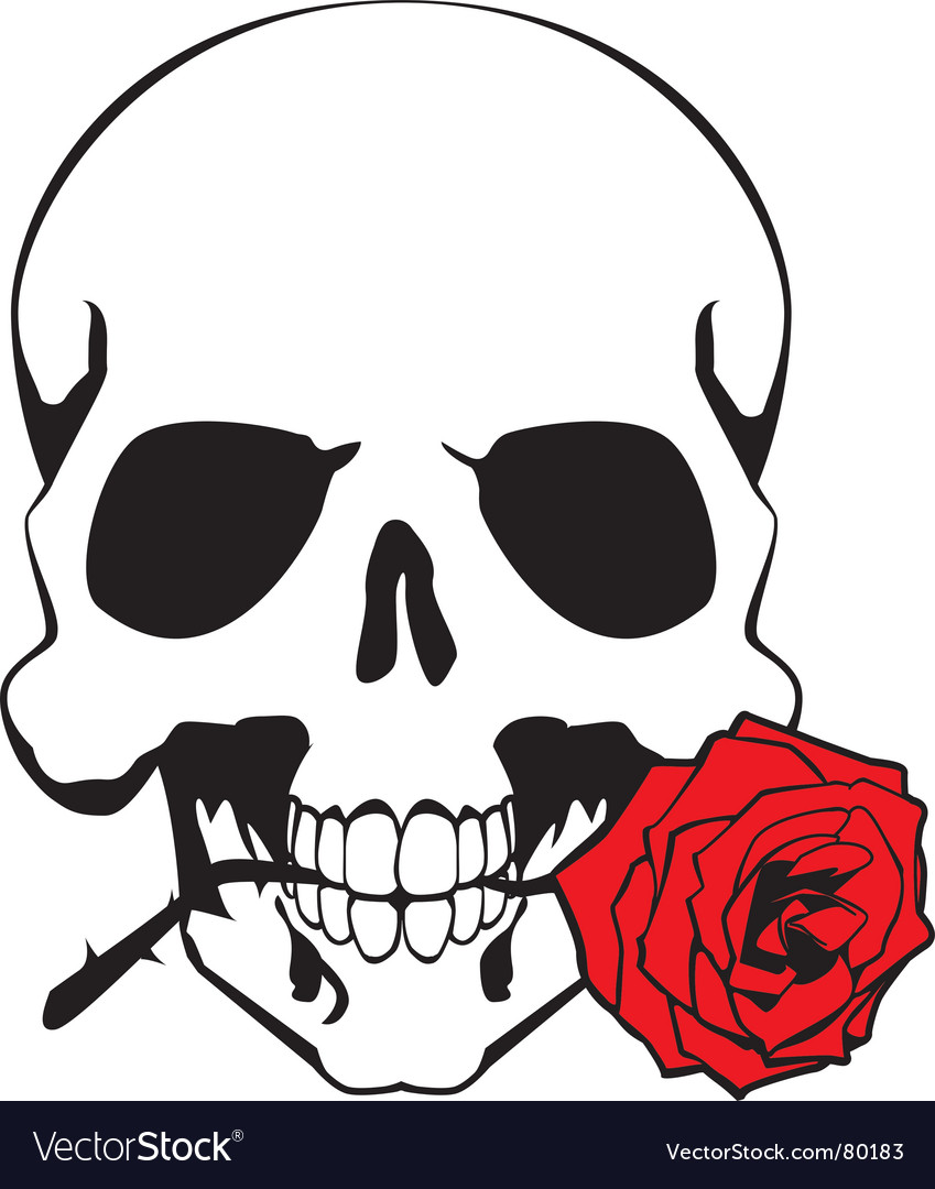 Skull and rose vector image