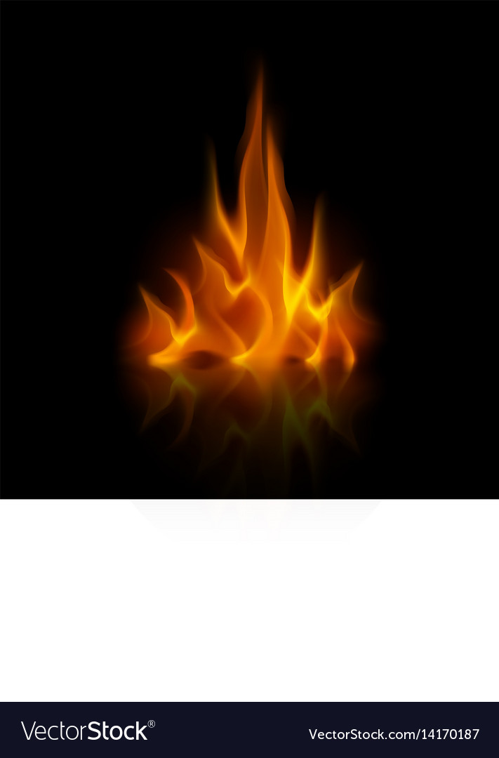 Yellow orange fire flame on background vector image