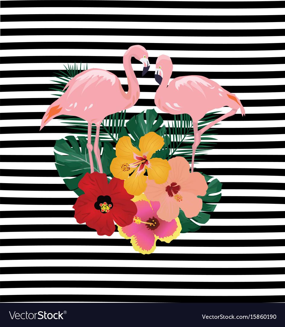Tropical flamingos vector image