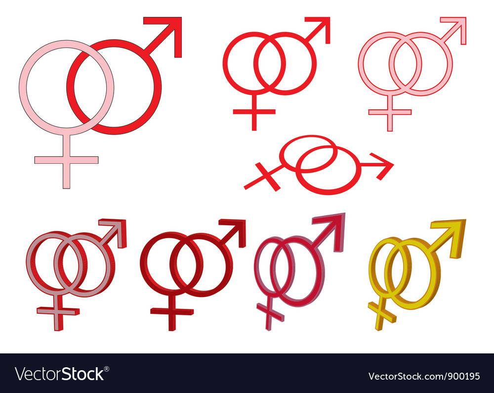 Gender symbols vector image