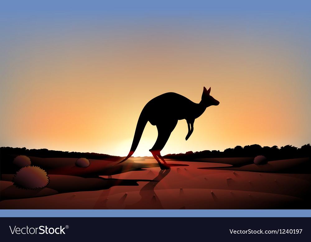 A sunset with a kangaroo vector image