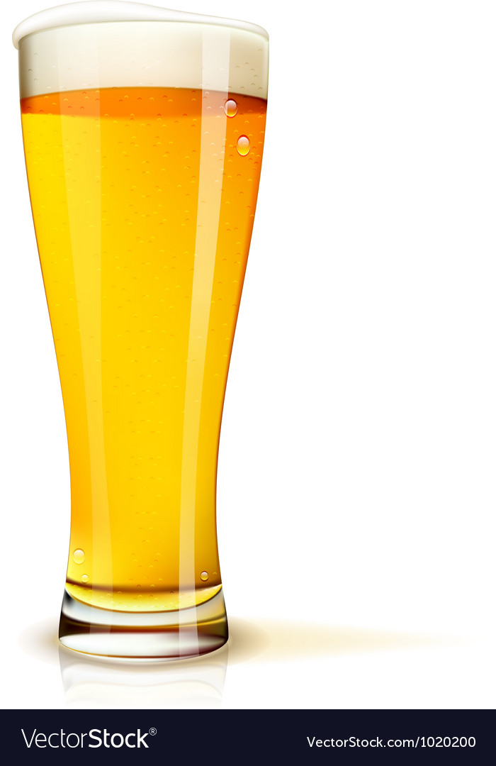 Isolated glass of beer vector image