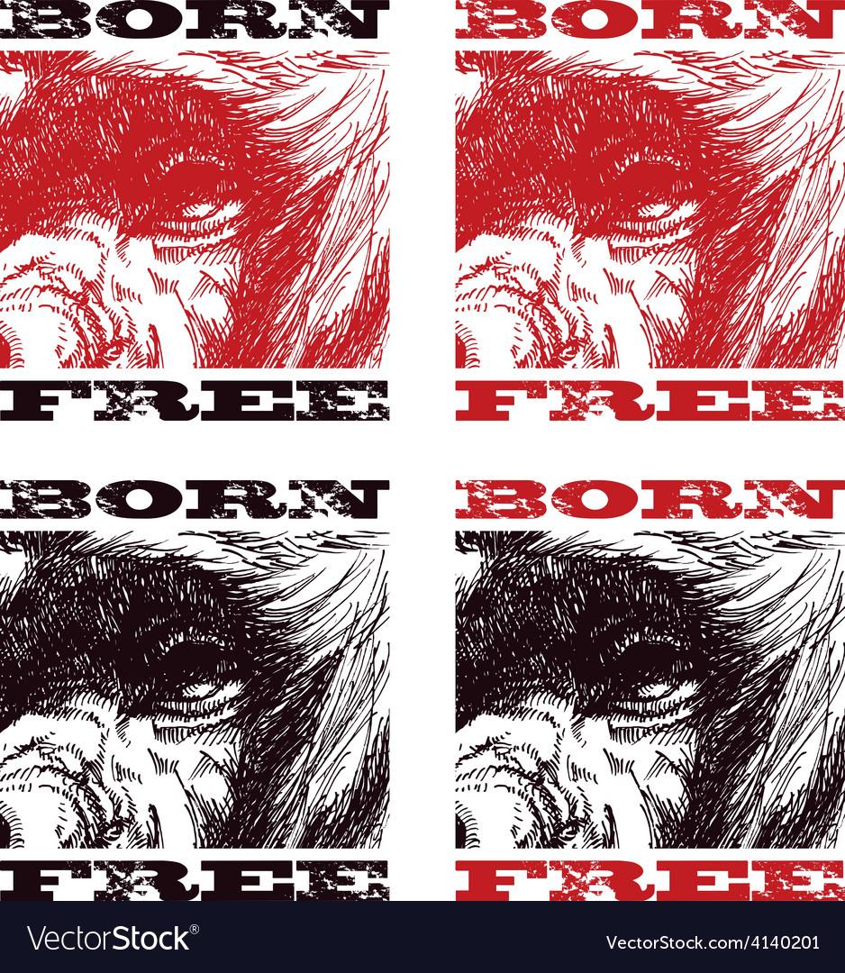 Head gorilla engraving style vector image