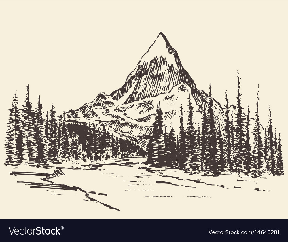 Sketch mountains pine forest river drawn vector image